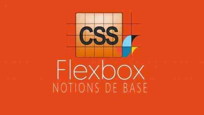 CSS Flex Notions De Base